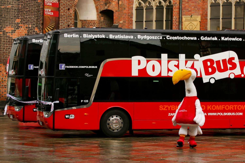 """Результат пошуку зображень за запитом """"""""PolskiBus"""""""""""