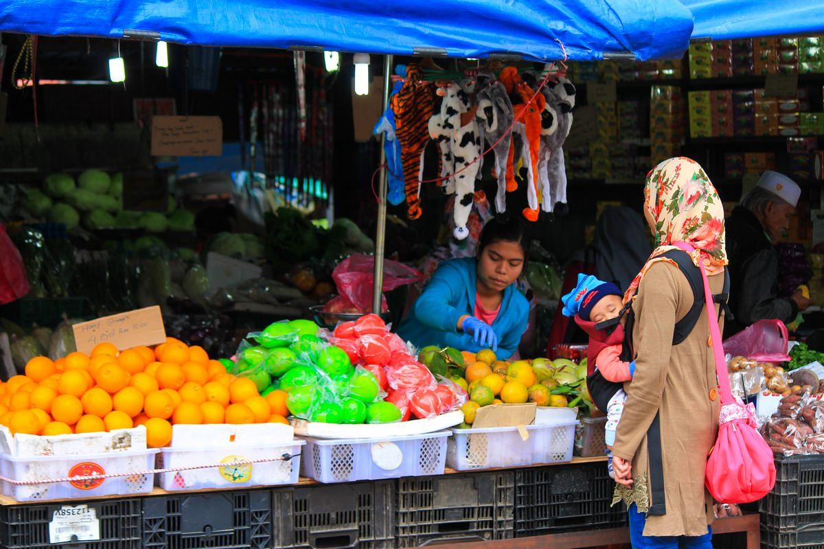 кровососов фрукты малайзии фото убеждены