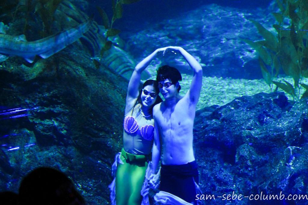 шоу в океанариуме в Бангкоке