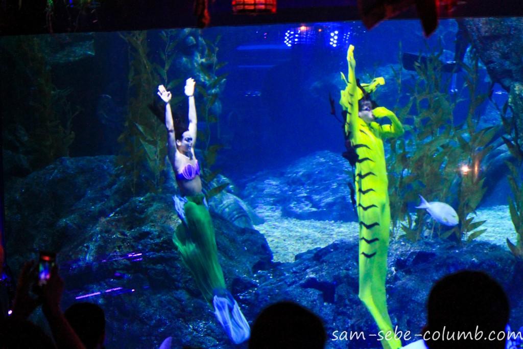 русалки в океанариуме