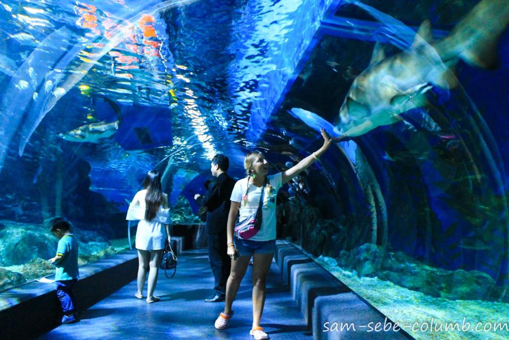 Sea Life Ocean World Bangkok