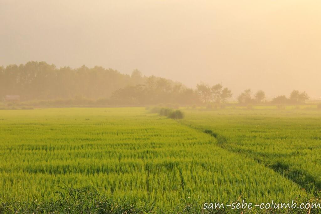 Самостоятельно в Мьянму