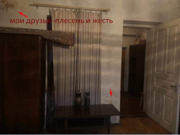 как найти жилье во Львове